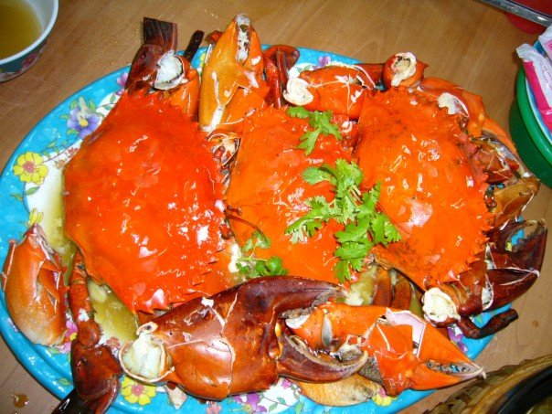 5 Bizarre Foods You Can Find in Singapore