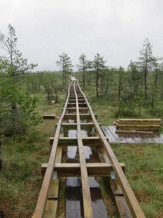 Viru bog walkway under construction