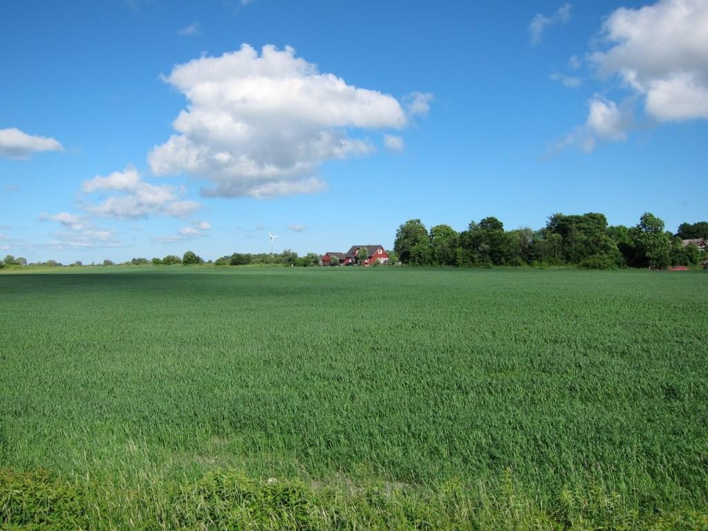 saaremaa farm