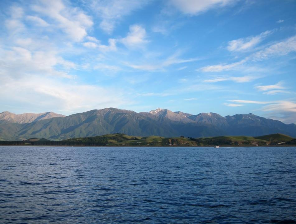 How to Catch the Freshest Lunch in Kaikoura