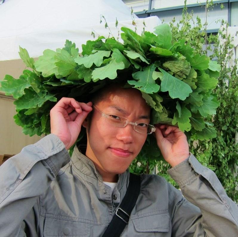 Ligo oak wreath