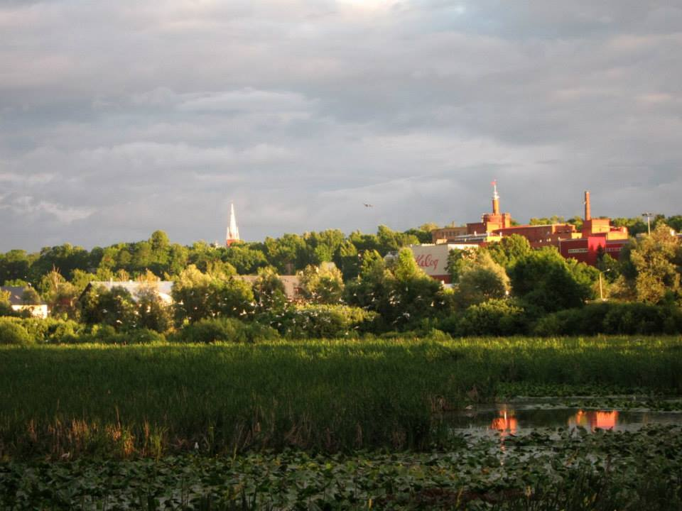 Tartu marsh