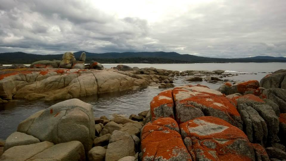A Guide to Covering Tasmania's East Coast in a Day