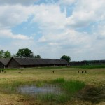 What to See in the Iron-Age Village of Biskupin