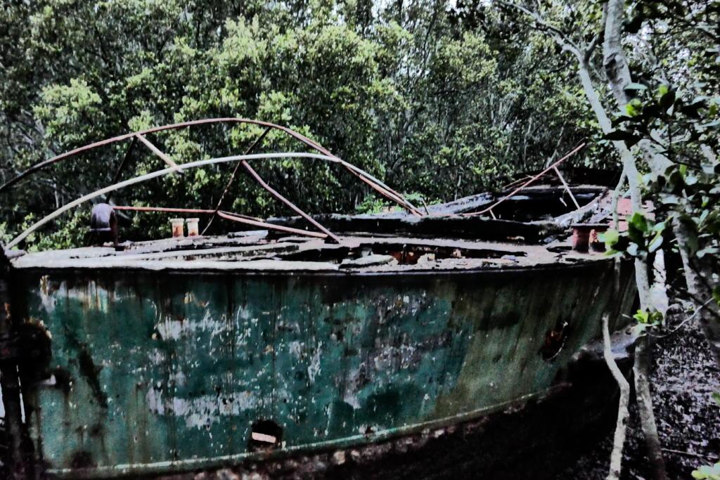 SS Heroic wreck Homebush Bay